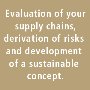 Evaluation of your supply chains, derivation of risks and development of a sustainable concept.